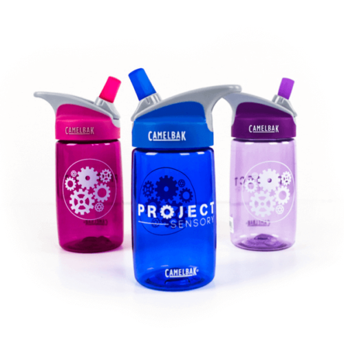 Project Sensory Water Bottles
